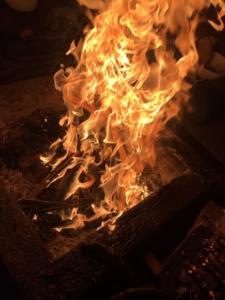 2021年5月ご神木プージャの炎